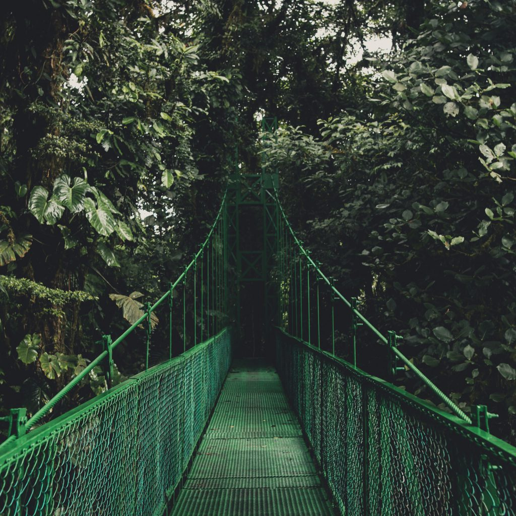 Monteverde-Nosara/Nosara-Monteverde